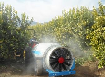 Tratamientos fitosanitarios: rápidos y seguros