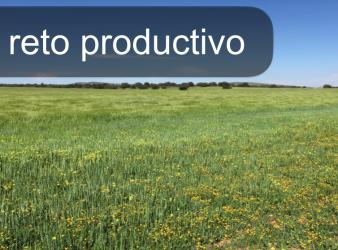 El reto productivo. ¿A qué se enfrenta el empresario agrícola? ¿A qué se enfrenta su técnico?