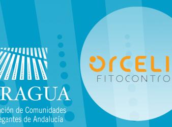 Nueva colaboración Orcelis Fitocontrol & Feragua