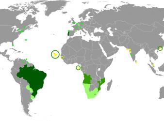 Orcelis Fitocontrol disponible en idioma portugués – Orcelis Fitocontrol agora em Português
