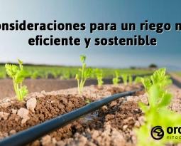 Consideraciones para un riego más eficiente y sostenible